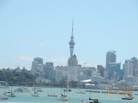 Auckland from Habour
