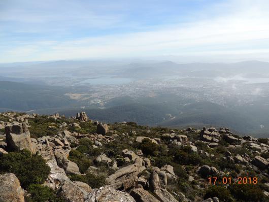 Mt Wellington