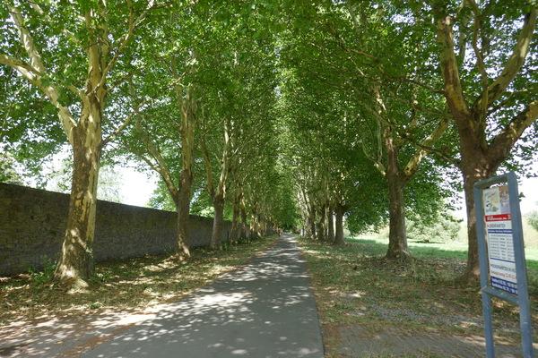 Radweg Kloster Corvey