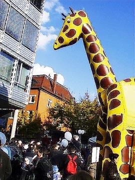Die Giraffenh?pfburg war die fotogenste.
