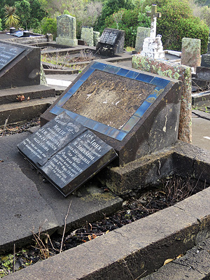 Hillsborough Cemetery - Clifton Road - Auckland - New Zealand - 19 February 2016 - 8:27