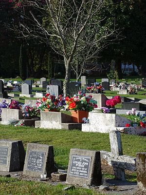 Rotorua Cemetery - Sala Street - Rotorua - New Zealand - 12 August 2014 - 16:41
