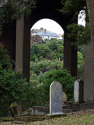 Symonds Street - Grafton Gully - Auckland - New Zealand - 18 June 2015 - 10:33