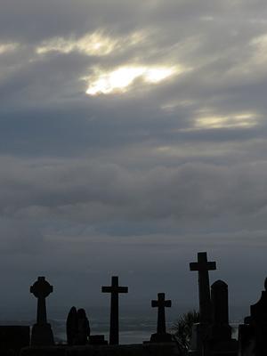 Hillsborough Cemetery - Clifton Road - Auckland - New Zealand - 19 February 2016 - 7:44