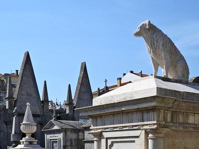 Cemitério da Lapa, Porto