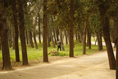 Ahnenschaendung auf dem Friedhof der Kongs. Dieser Typ wird Schwierigkeiten mit Geistern bekommen.