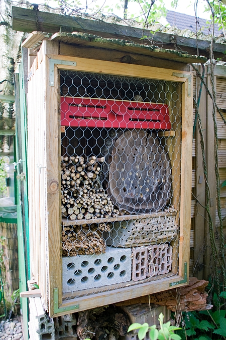 europamitte ein insektenhotel. Black Bedroom Furniture Sets. Home Design Ideas
