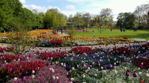 Aussicht beim Haupteingang: Frühlingshafter Luisenpark