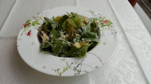 Zarte Lindenblätter mit Bärlauchblüten schmecken als Salat