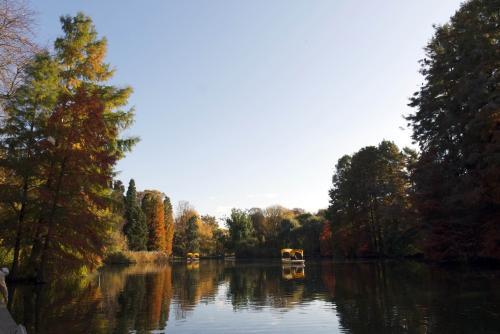 See im Luisenpark