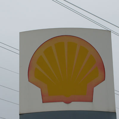 muschel<br /> shell<br /> faded