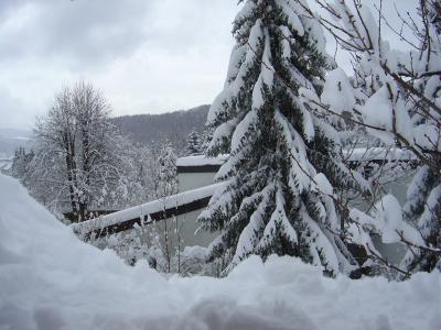 mit dem Feger den Schnee weggestossen