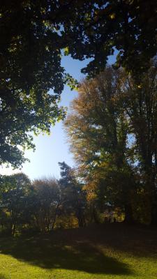 Herbst in Zürich