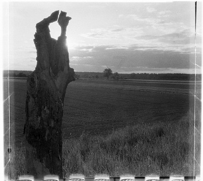 AGFA ISOLY + Lucky 100