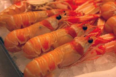 Langusten Krebsfleisch Scampi Krabben Schalentiere