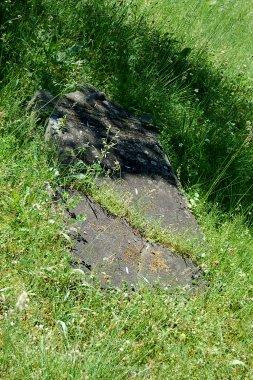 Jüdischer Friedhof in Demmin, umgestürzter Grabstein
