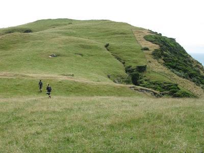 Der Hill-Top-Walk zum Wharariki-Beach