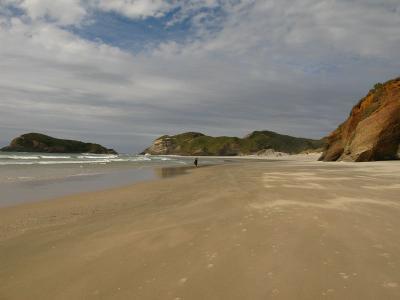Wharariki-Beach