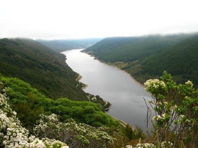 Cobb-Reservoir