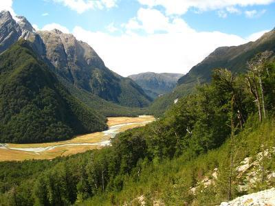 Routeburn-Flats Tal im Mt. Aspiring NP. (Wir sind auf der Wanderung durch zwei National Parks gekommen...