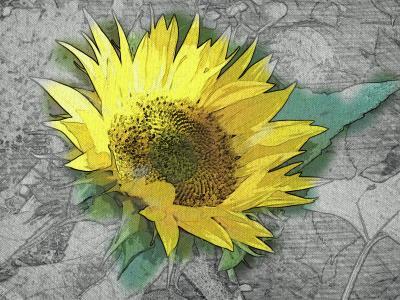 Sonnenblume mit paperartist aufgepeppt