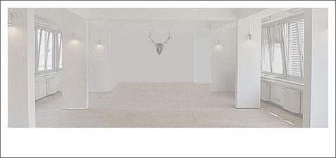 the pixeleye blog by dirk behlau kool lifestyle design