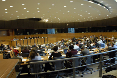 Verhandlung vor dem Petitionsausschuss des Europäischen Parlaments am 07. 06. 2007