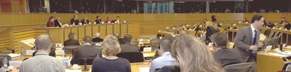 Petitionsausschuss des Europäischen Parlaments 22.11.2007