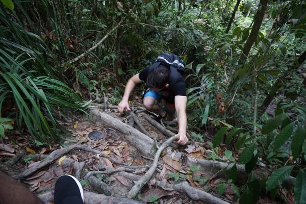 Was sich eher nach Klettern anfühlt, ist der offizielle Wanderweg im Templer Park.