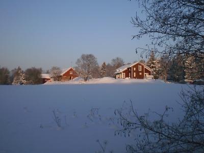 [Bild: schneebedeckte finnische Winterlandschaft mit roten Holzhäusern]