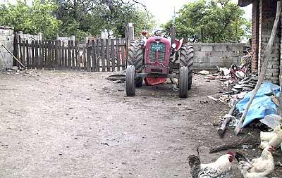 Tractor. (novala)