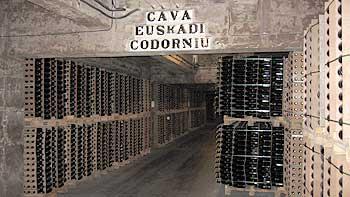 Winery Codorníu. (novala)