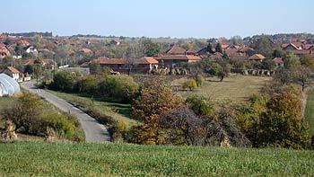 View over Halovo. (novala)