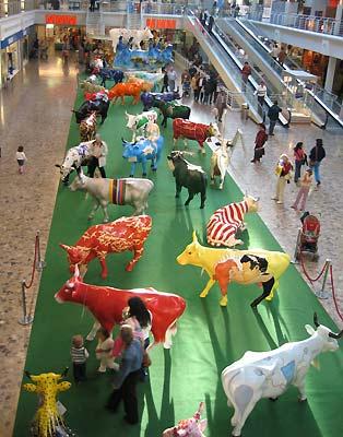 Painted cows in Geneva. (novala)