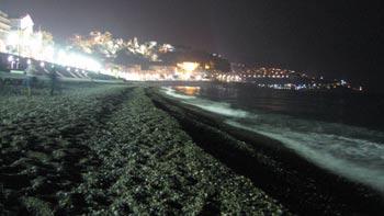 Beach, Nice. (novala)
