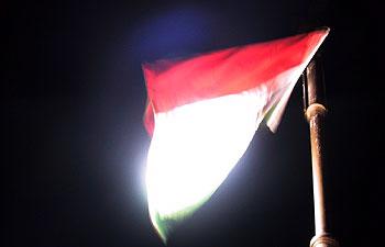 Hungarian flag. (novala)