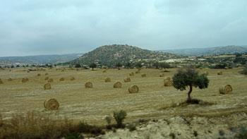 Cyprus' fields. (novala)