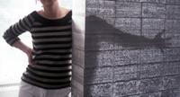 light transmitting concrete: more info