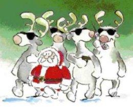 Tinas Sammelsurium Nähen Stricken Und Mehr Weihnachtliche