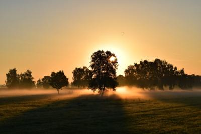 https://pixabay.com/de/photos/sonnenaufgang-morgennebel-morgenrot-1634734/