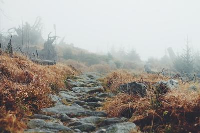 https://pixabay.com/de/photos/landschaft-pfad-weg-wandern-natur-691150/